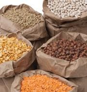 FoodInnovationPlantsProteins